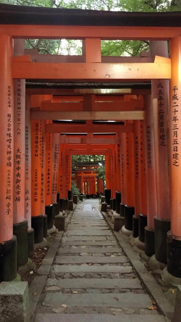 Fushimi Inari sentiero torii