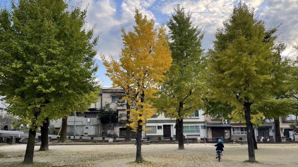 Parco a Kyoto